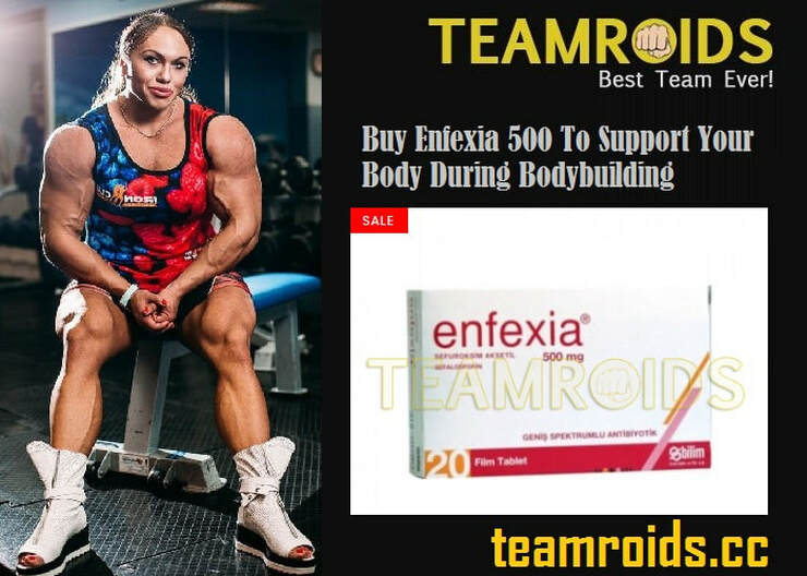 Buy Enfexia 500 To Support Your Body During Bodybuilding - Teamroids
